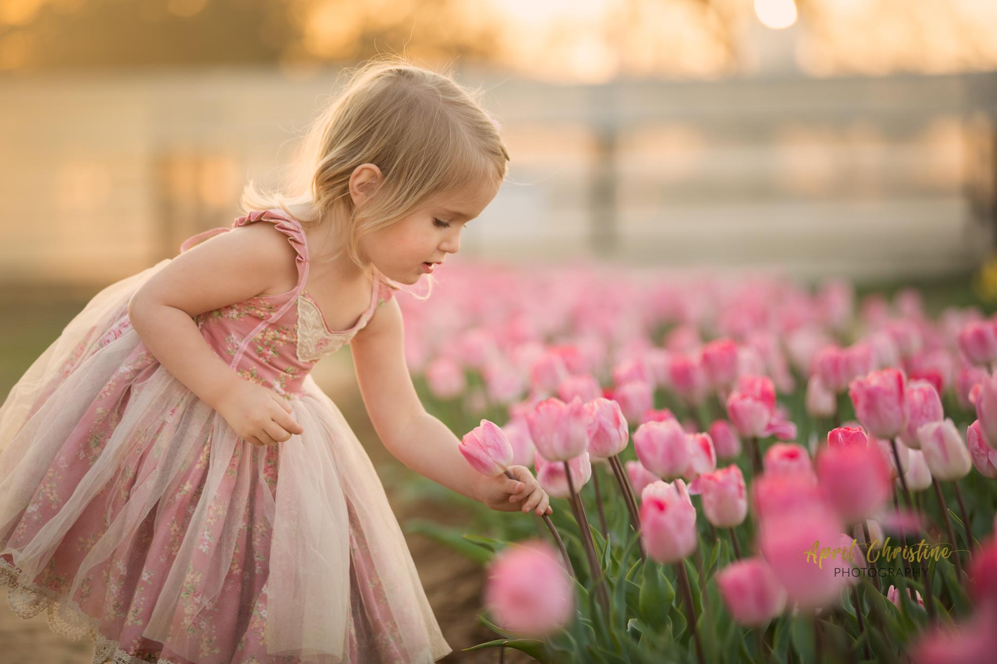 Family Photographer Dallas Texas | Texas Tulips