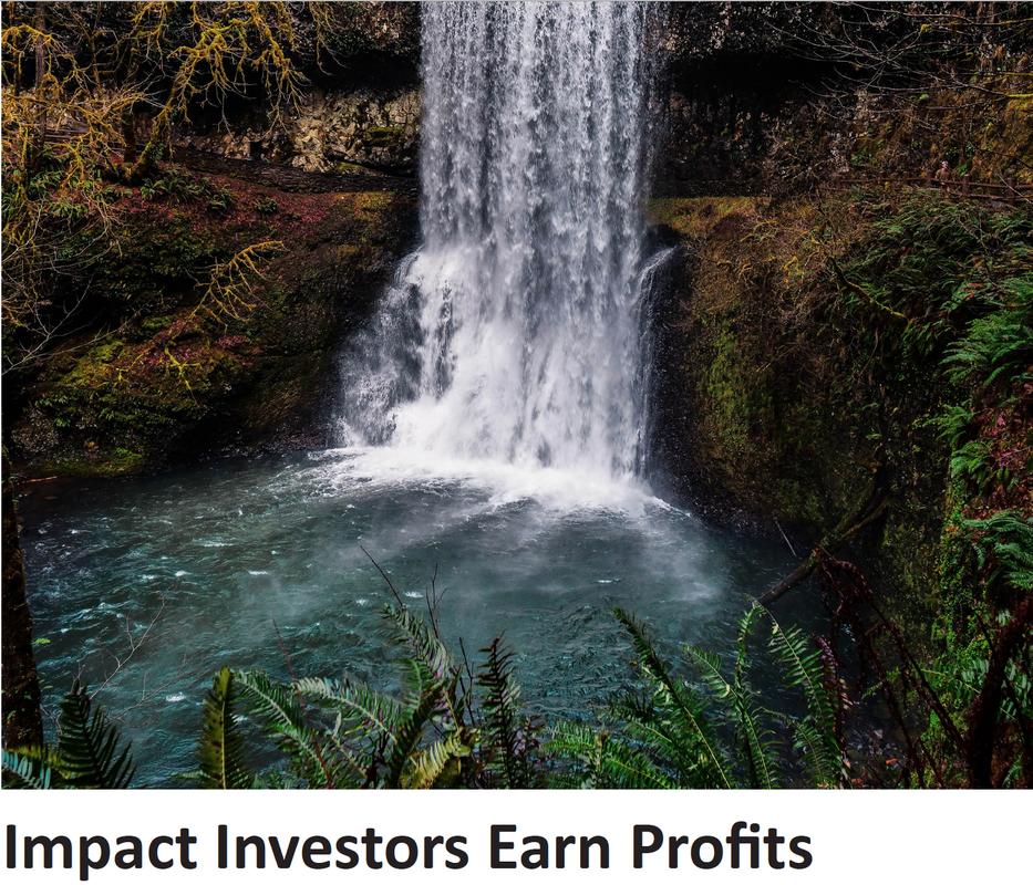 impact_investors_earn_profits
