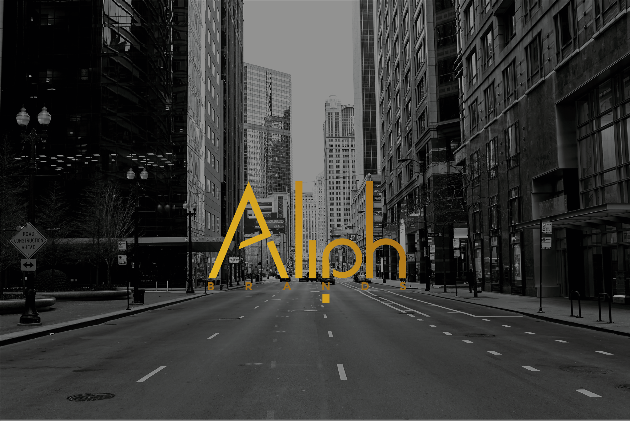 Aliph_brands-banner.png