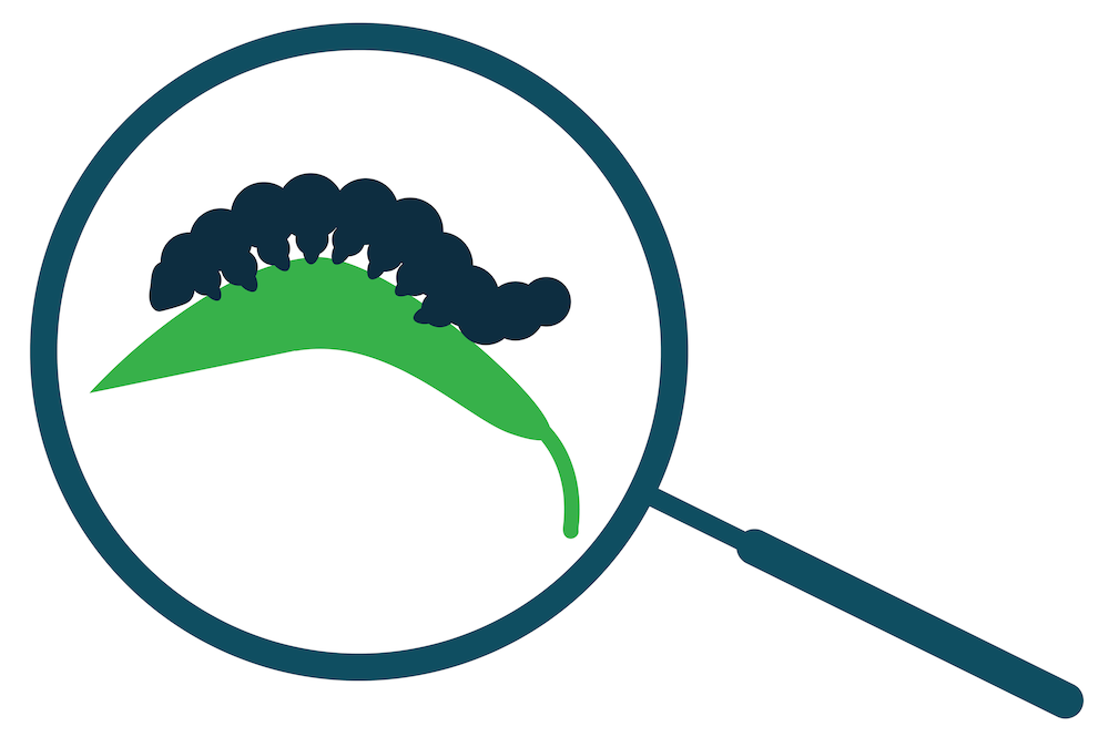 Farmers can use CRISPR diagnostics to identify agricultural pests. Knowing the identity of such pests enables farmers to get rid of them more quickly and save their crops.