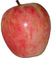 apple_chenangostrawberry.jpg