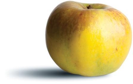 apple_mutsu.jpg
