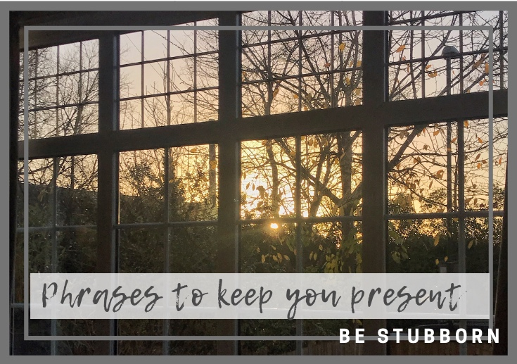 Two phrases to keep you in the present | Joanne Becker | Be Stubborn | Coaching | small business, creative coaching, resources, content creator