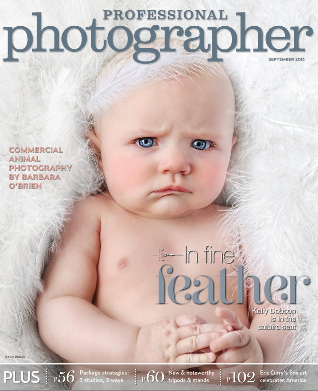 professionalphotographer_cover_september2013.jpg