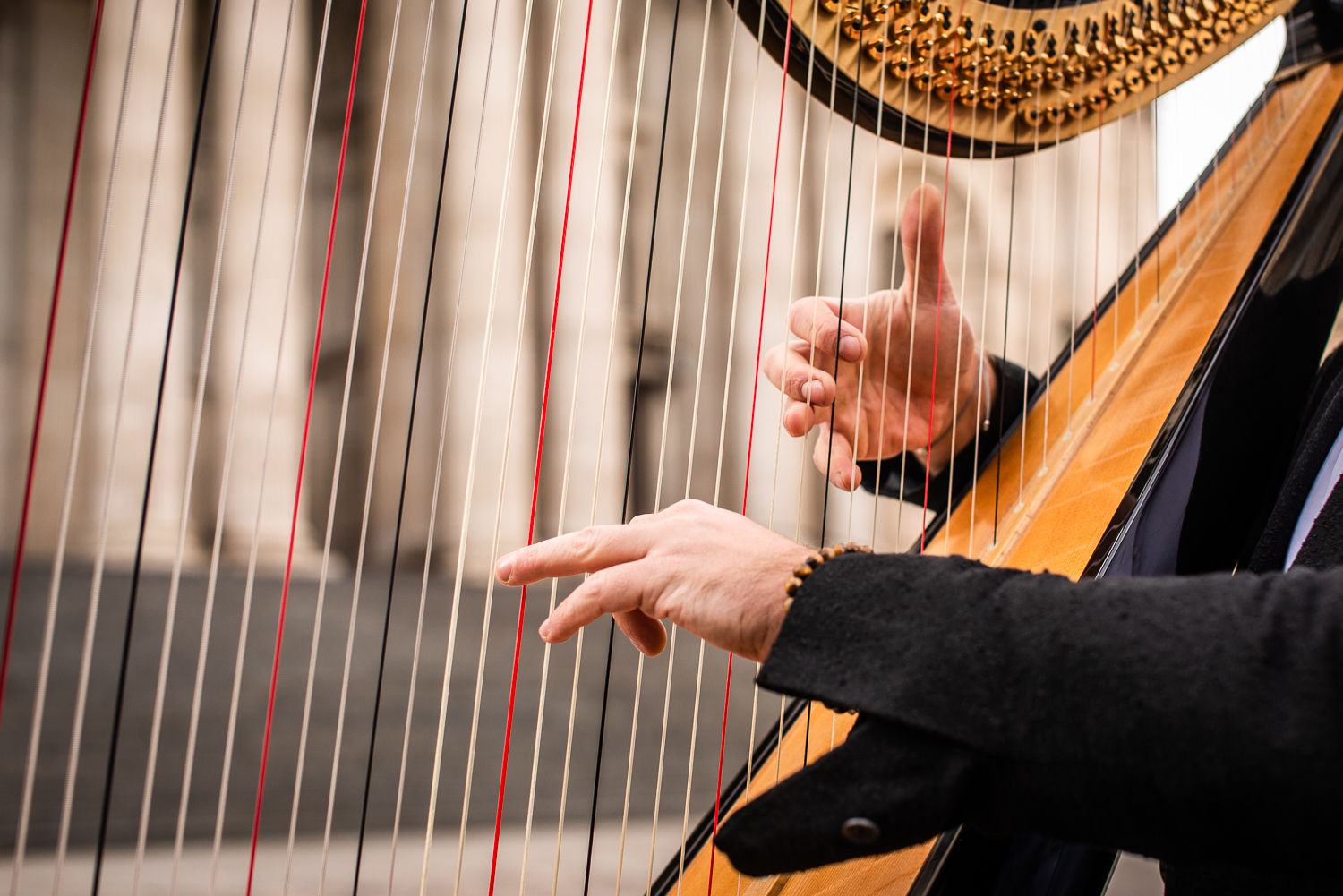 Alex the Harpist-2.jpg