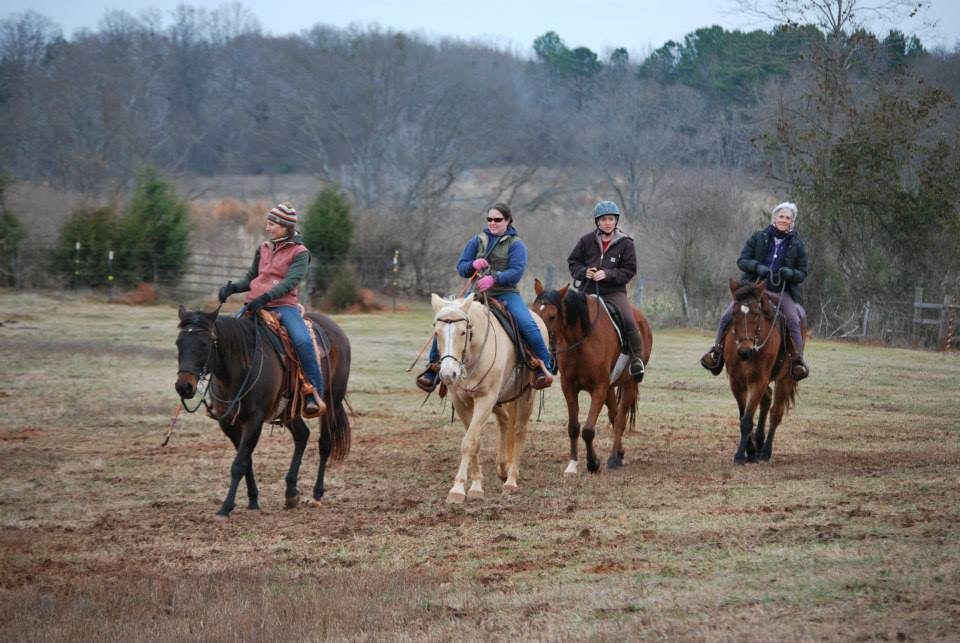 Horsemanship Ranching Horse Riding Lessons Boarding
