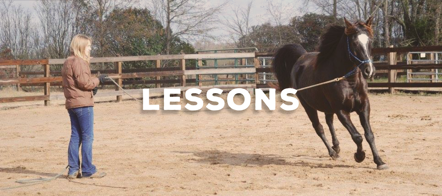 Horse Riding Lessons Anderson South Carolina Upstate Stable