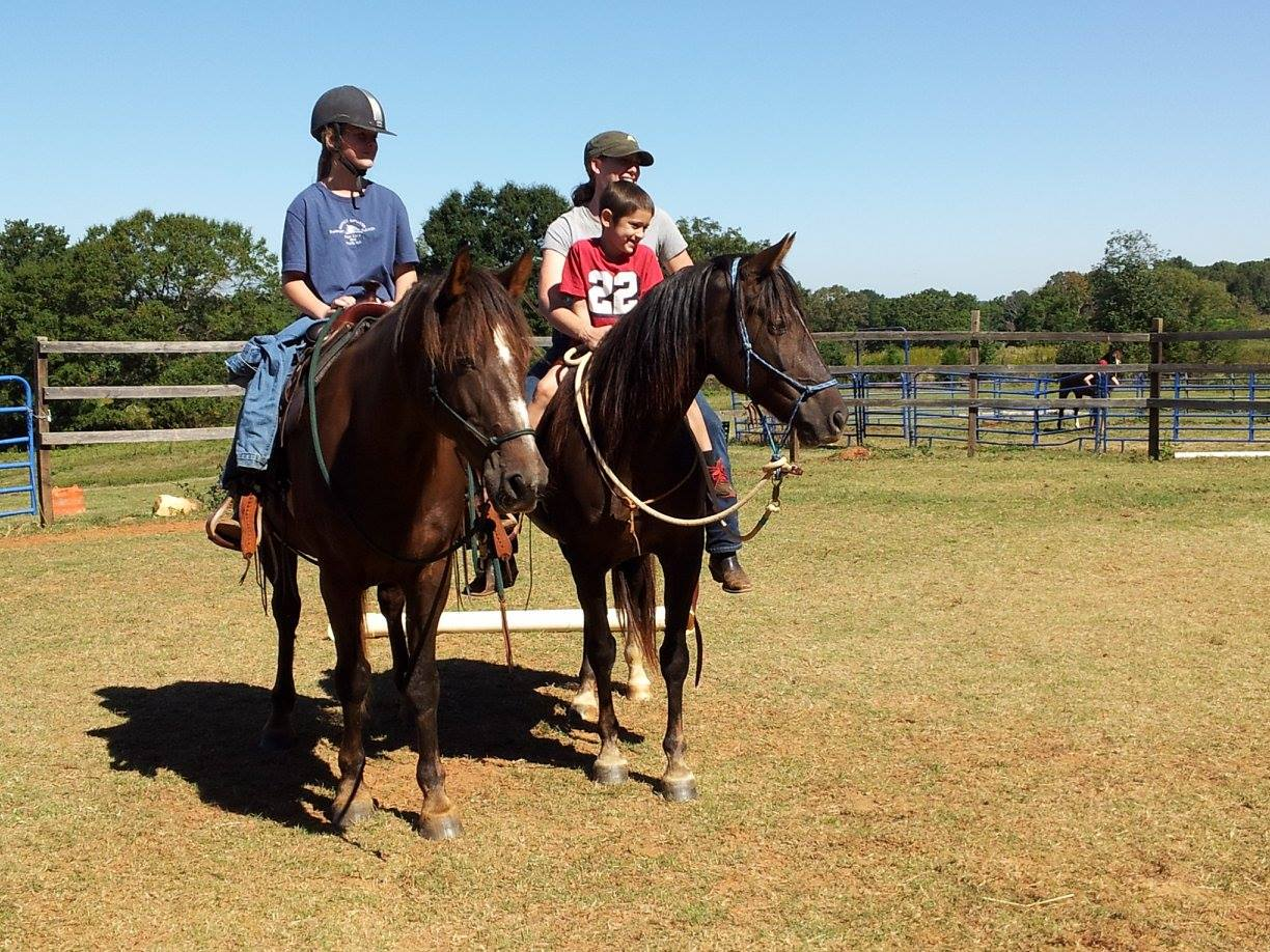 Horseback Riding Lessons Equine Boarding Stable