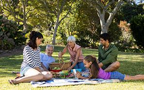 Picnicking -