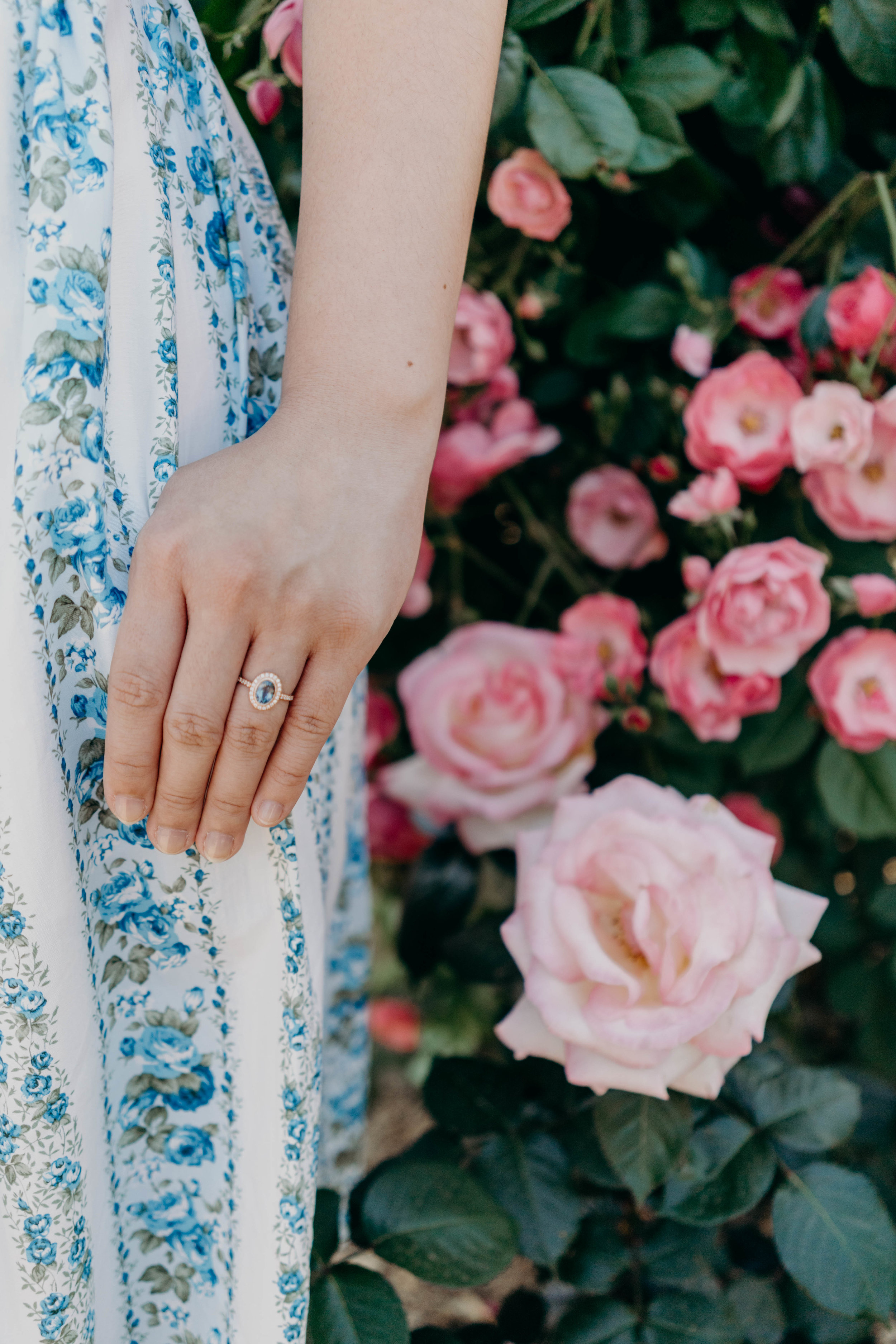 Why I Proposed Without a Ring | On the Street Where We Live ( aretherelilactrees.com )  engagement ring, rose gold engagement ring, sapphire engagement ring, Montana sapphire