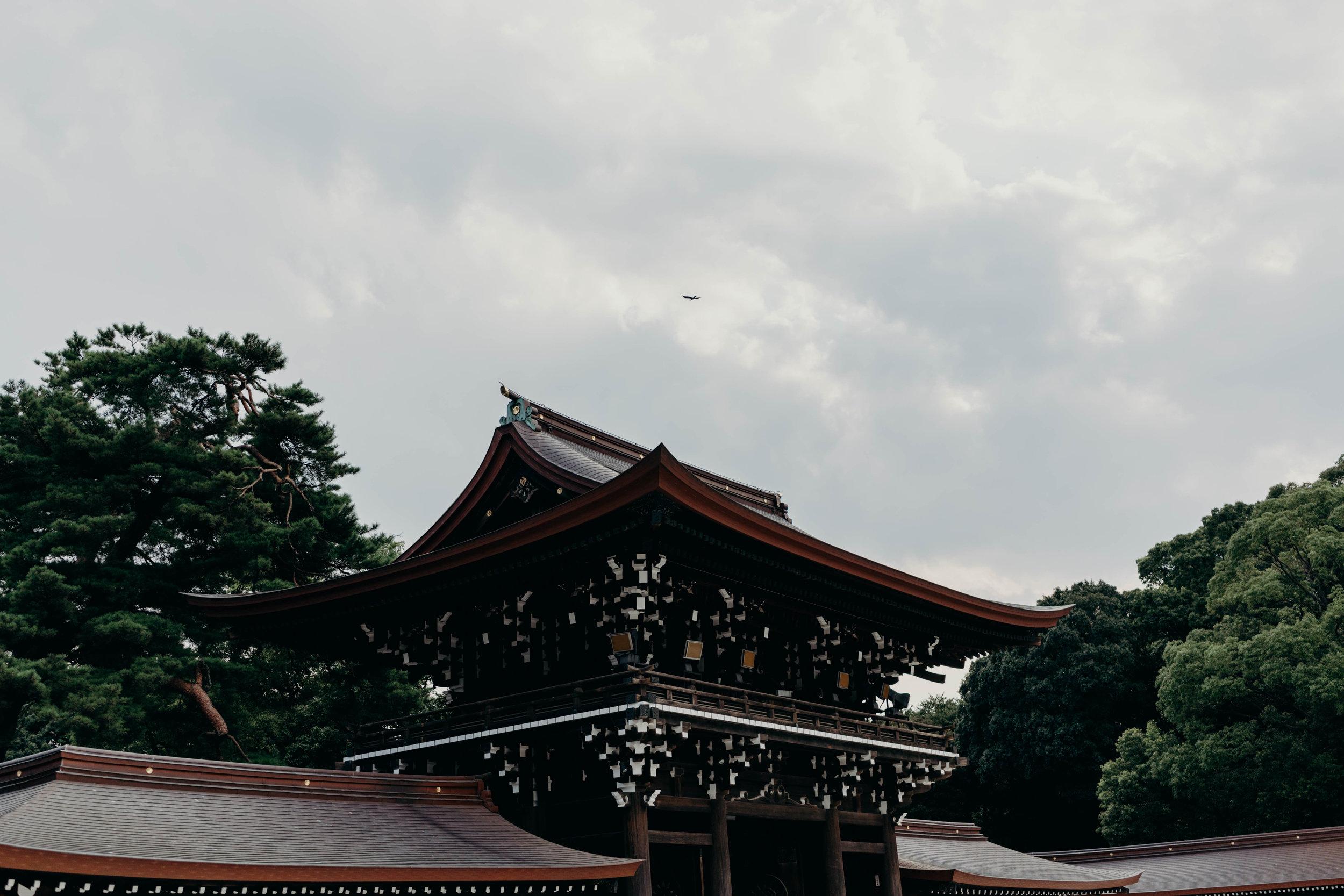 A Three-Day Girls' Trip to Tokyo | On the Street Where We Live ( aretherelilactrees.com )  Meiji Jingu, shrine, Shibuya, Tokyo, Japan