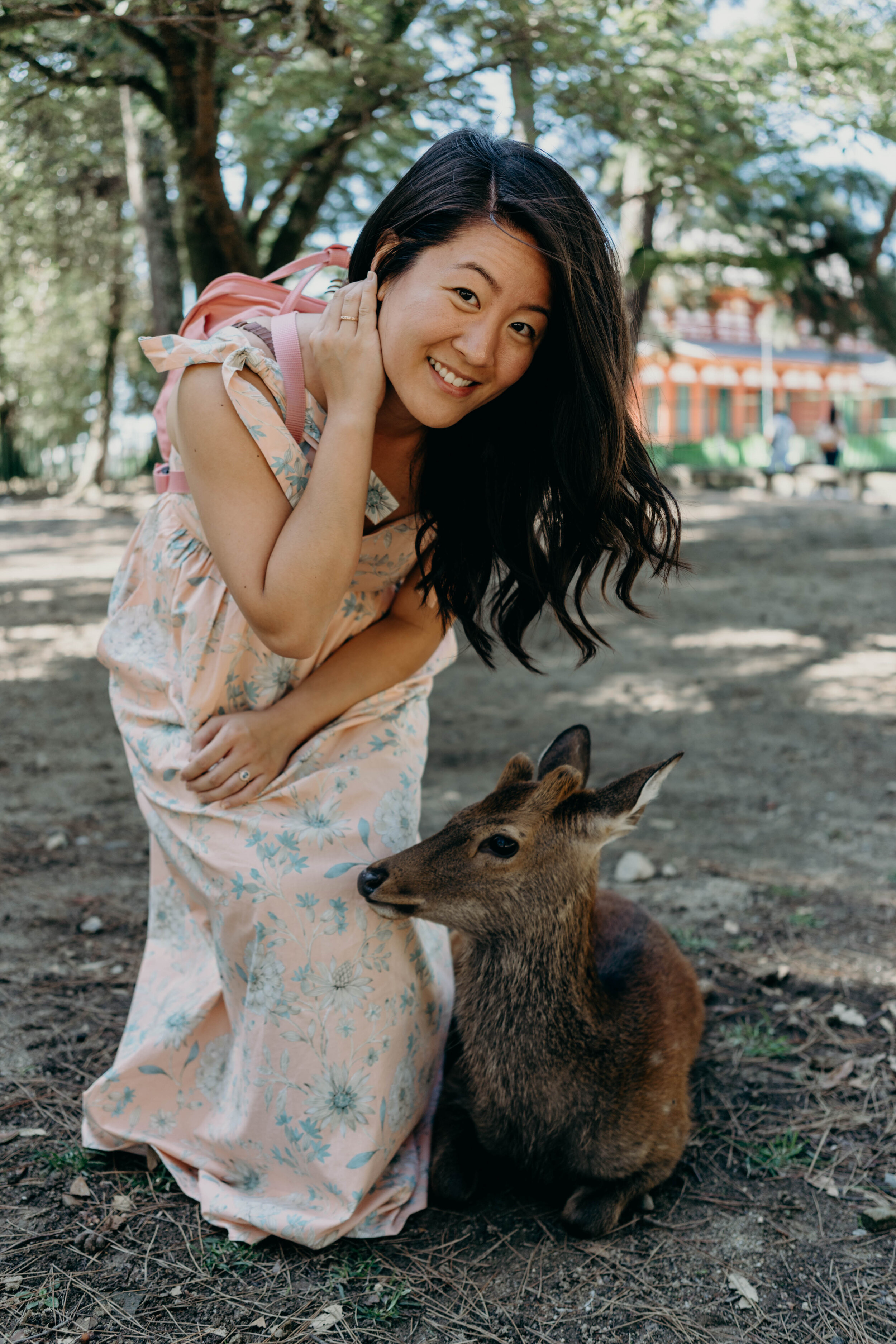 Making Friends with the Deer at Nara Park, Japan | On the Street Where We Live ( aretherelilactrees.com )  Nara, Japan, Nara Park, Nara Deer Park, deer, Kyoto day trip, Osaka day trip, Gal Meets Glam Collection