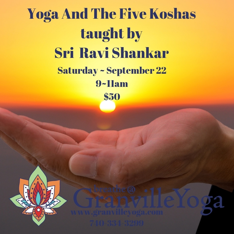 Join Sri Ravi Shankar to learn about our Koshas; layers that include the physical, energetic, mental & emotional, higher intelligence and our bliss bodies.