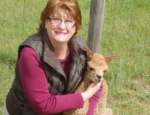 Shelly Payne is the other owner of Setting Sun Alpacas. Apart from helping to take care of the alpacas as well, she handles the gift shop, makes crafts, and helps coordinate the Farm Days events.