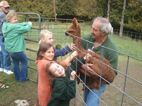 Tom chased down Chancellor when he was still a cria (baby alpaca) and let some children pet him.