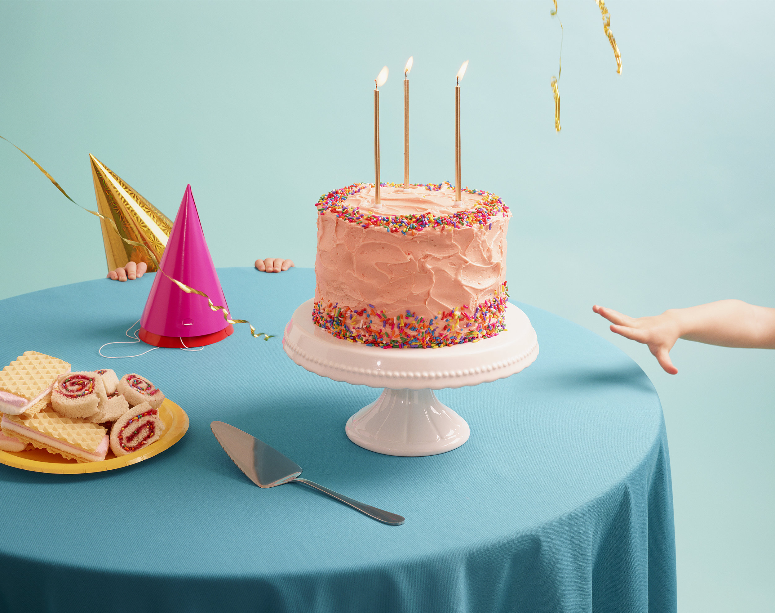 VL886_BirthdayParty_cake_before.jpg
