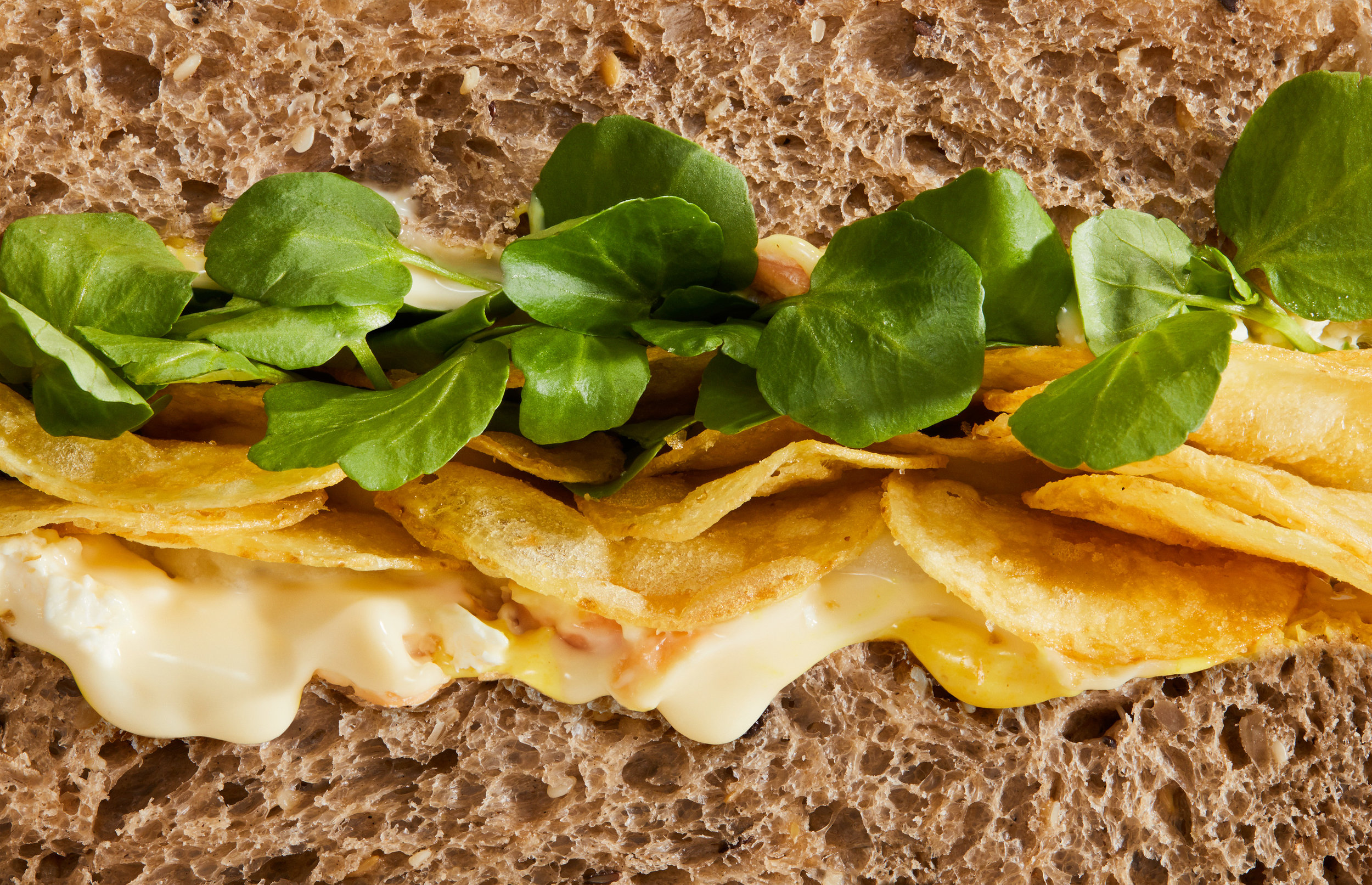 20161205+Sandwich+5-6391+01a.jpg