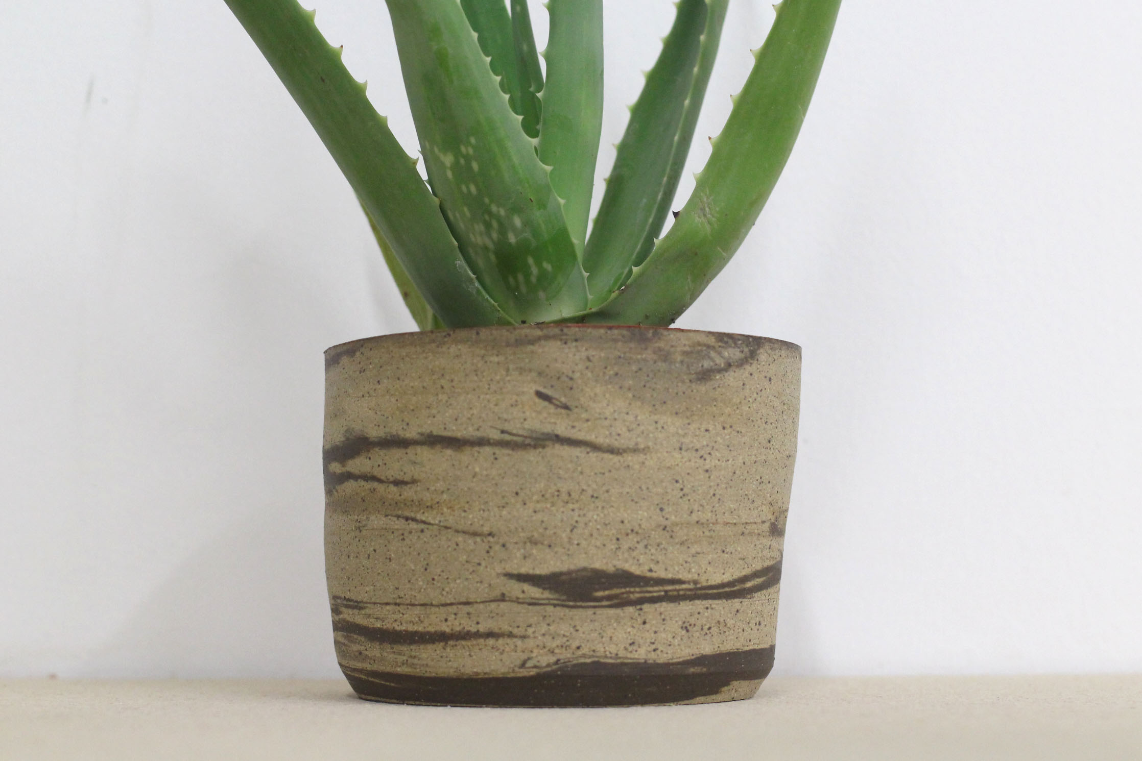 Planter1`.jpg
