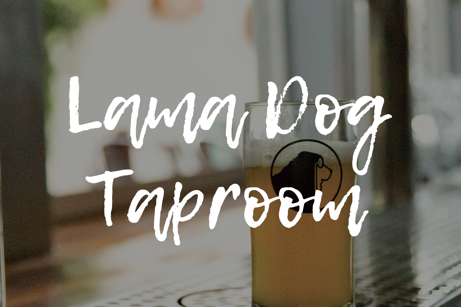 lama dog taproom + bottleshop print
