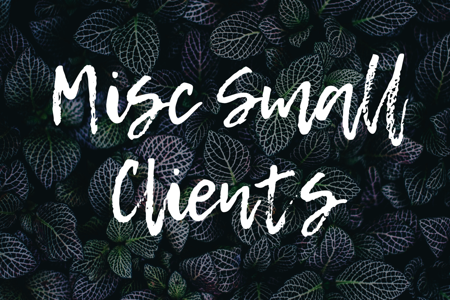 miscellaneous small clients