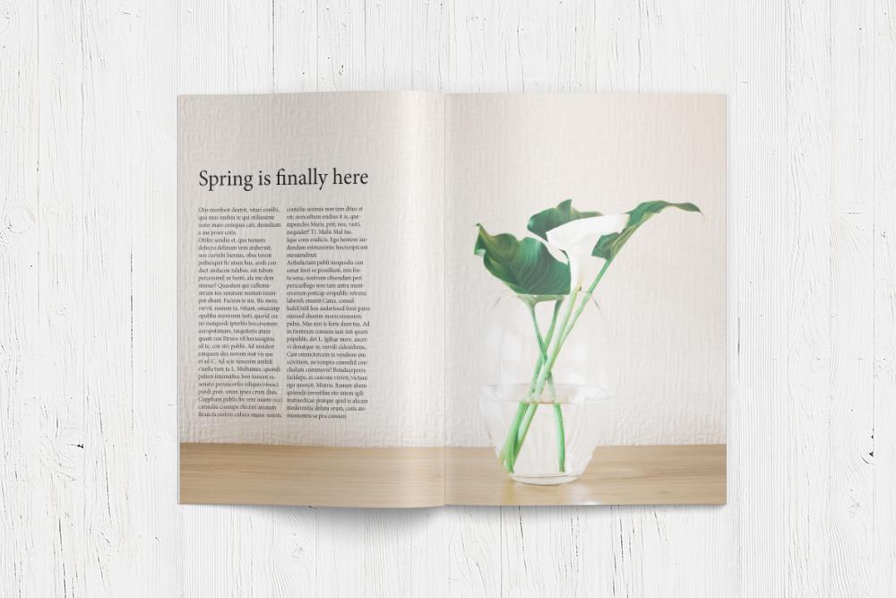 magazine-mockup-page-5-6.png