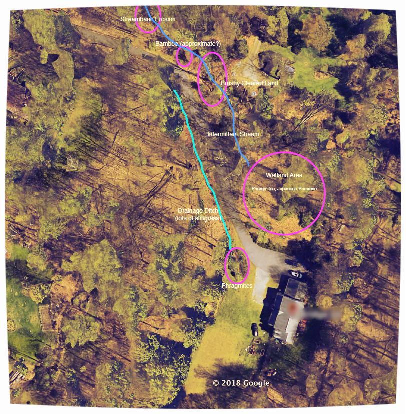 Habitat assessment aerial.png
