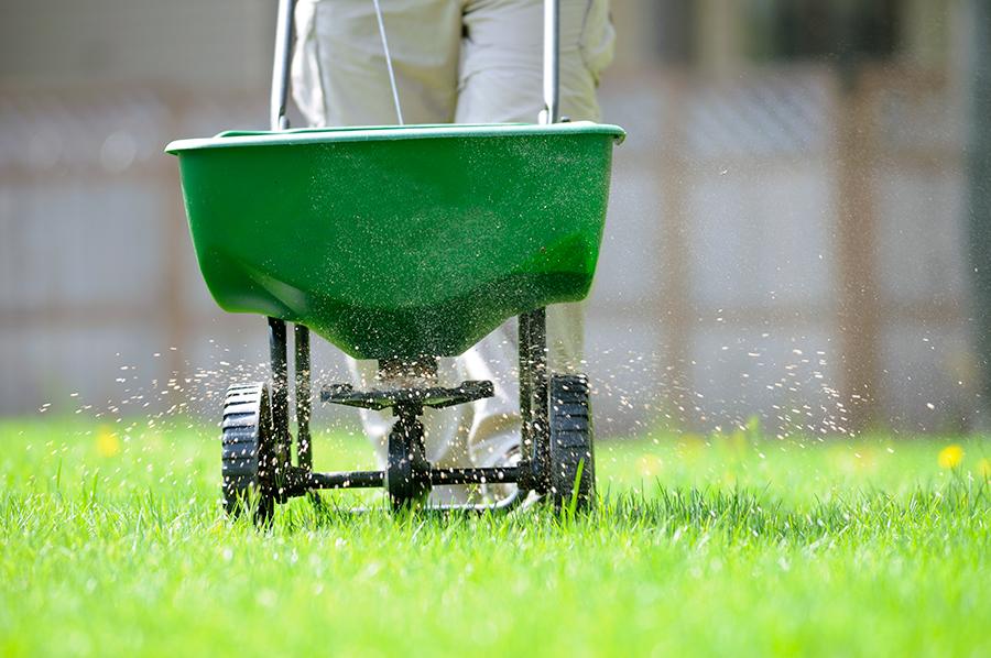 Fertilization Weed Control -