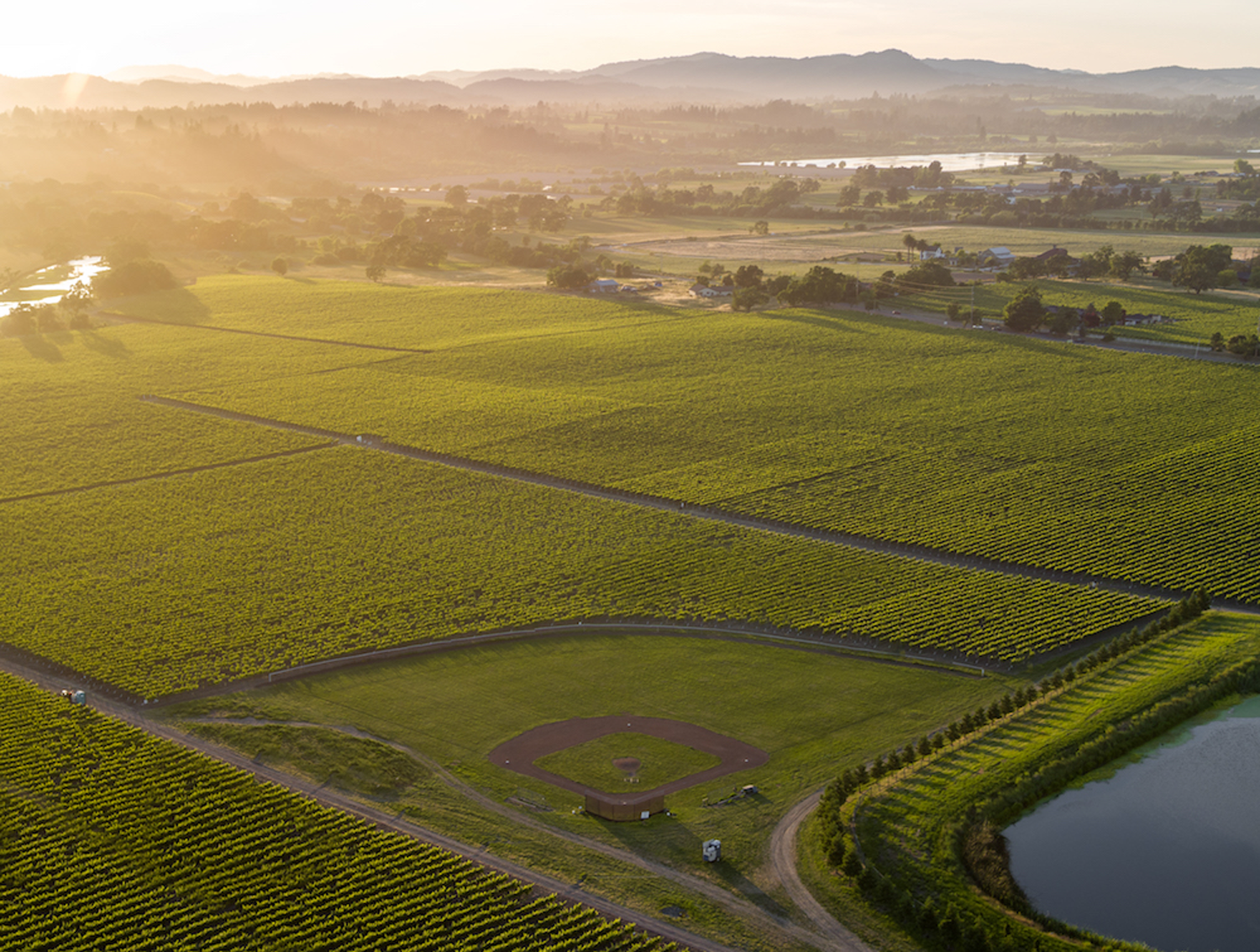 Aerial_image_of_Balletto_Field_of_Dreams_at_sunset.png