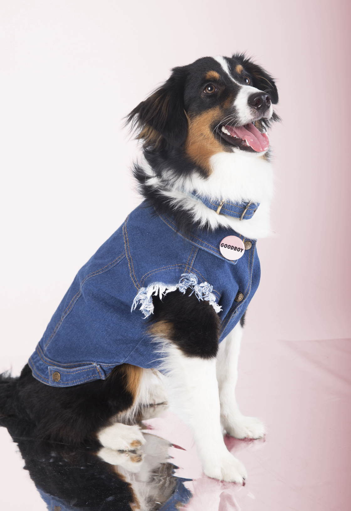 Murphy's Favourite Things - Some of Murphy's hobbies include watching the game (football and hockey, obvs) with the boys, grooving along to Miley Cyrus, and hitting the trails.His favourite new outfit?  Paws down, his Raw Denim Vest.