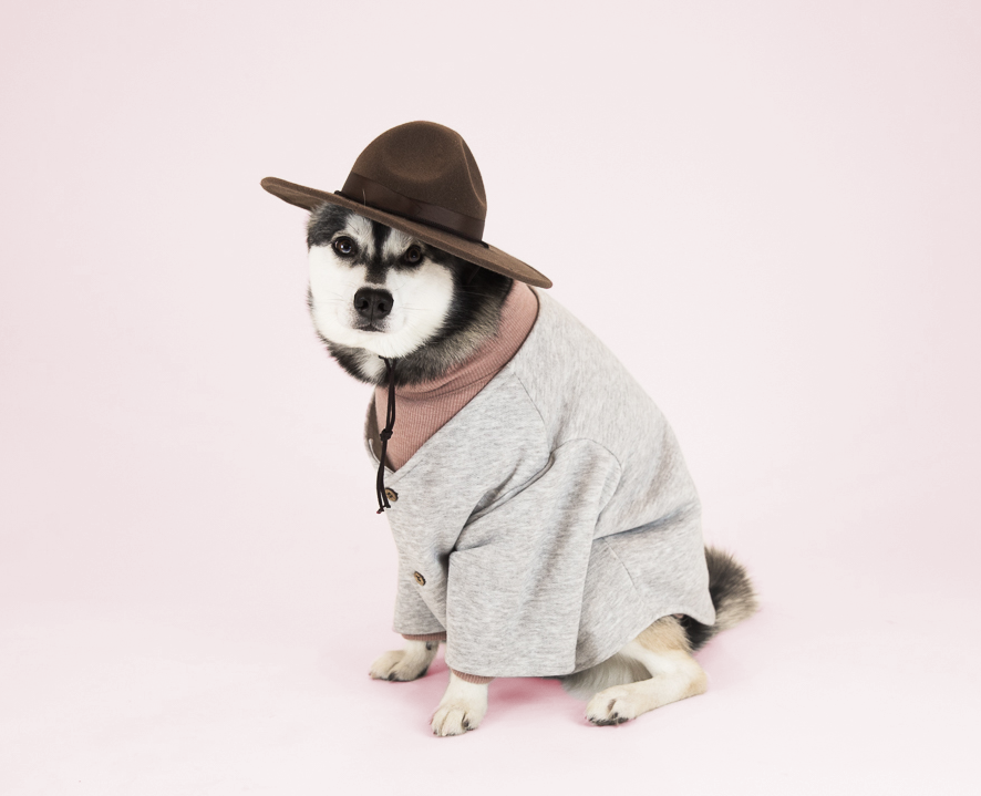 Favourite Goodboy Swag - Kai's favourite way to make a statement is through the layered look.  He takes the Rose coloured Dog Threads Turtleneck and layers it with the Dog Threads Grey Campus Cardigan.  So cute.
