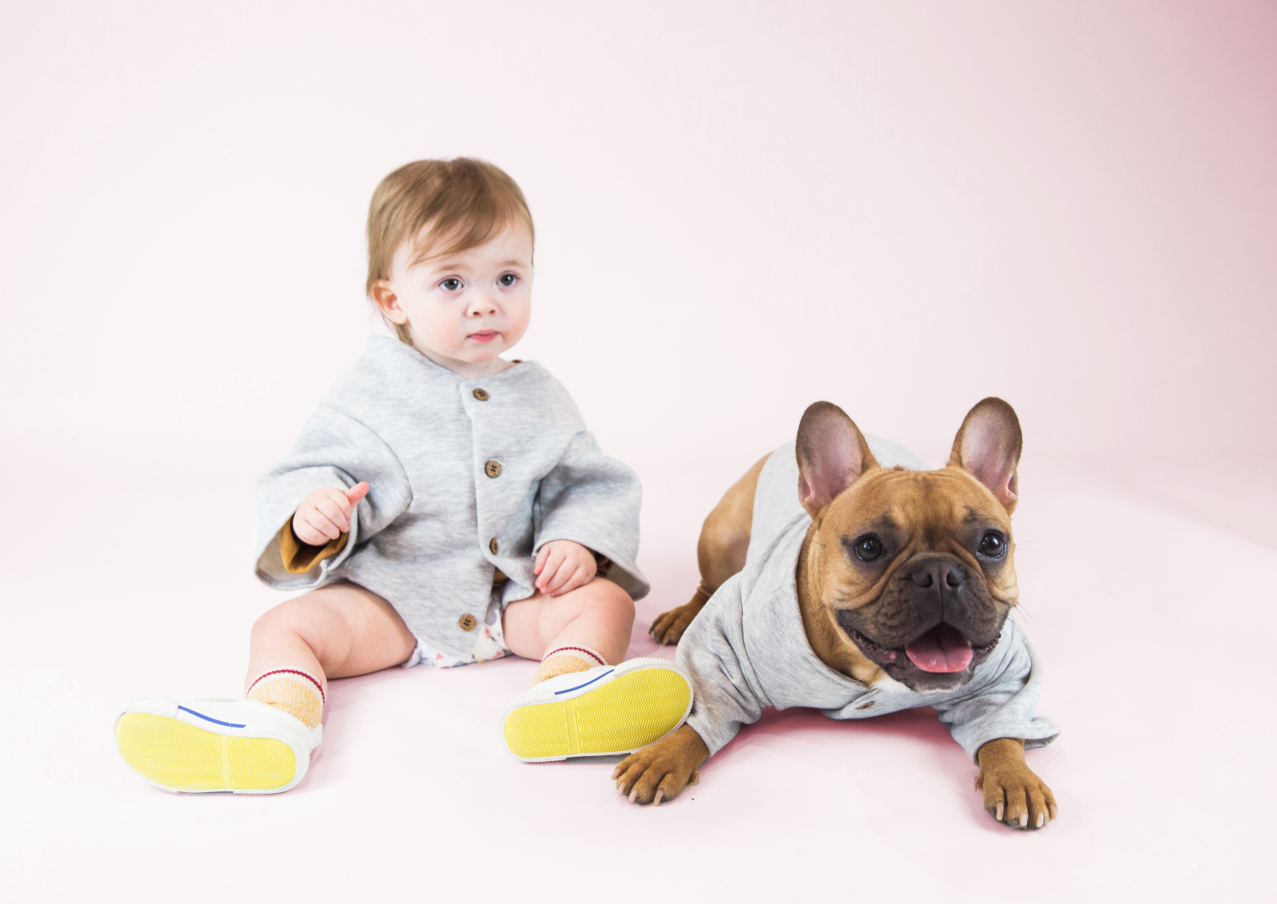 Meet Taco + Sterling. - Age: Taco - 2 years. Sterling - 16 months.Breed: French BulldogHometown: Toronto, Ontario