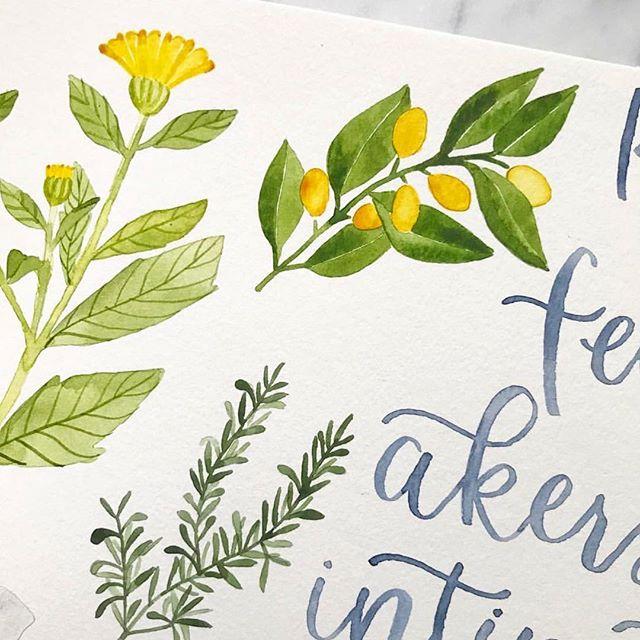Spring time watercolor menus 🌿💛🌿