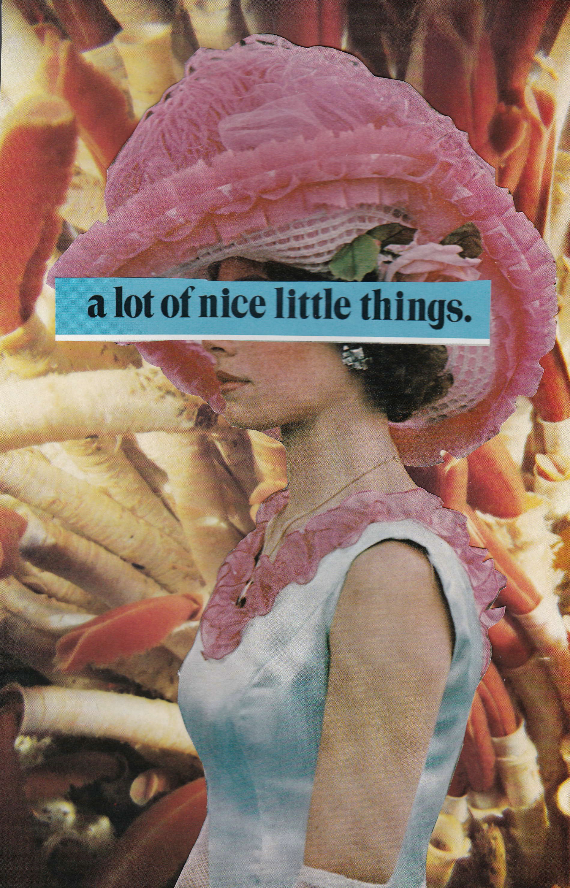 A LOT OF NICE LITTLE THINGS  BY CHARLOTTE JACKMAN