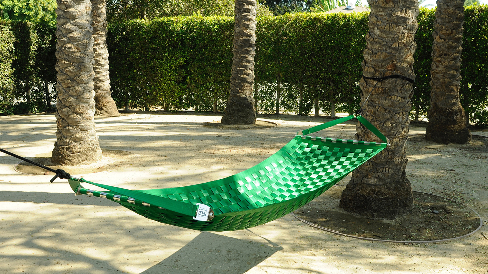 Lime green Ting Sling hammock hanging among palm trees in the outdoor area surrounding a Los Angeles office space.