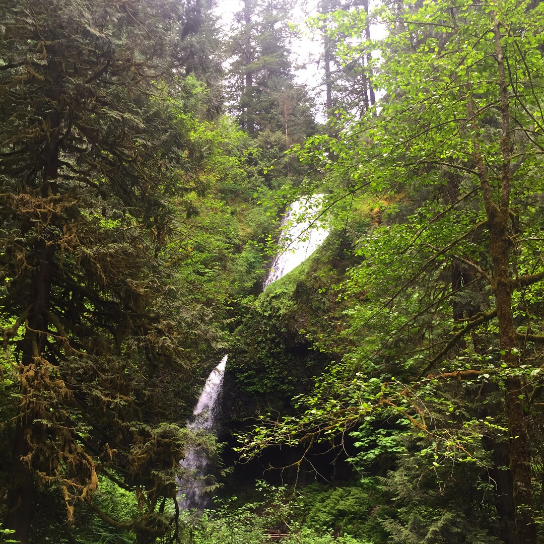 Upper Latourell Falls. Photo by Sarah Cadwell.
