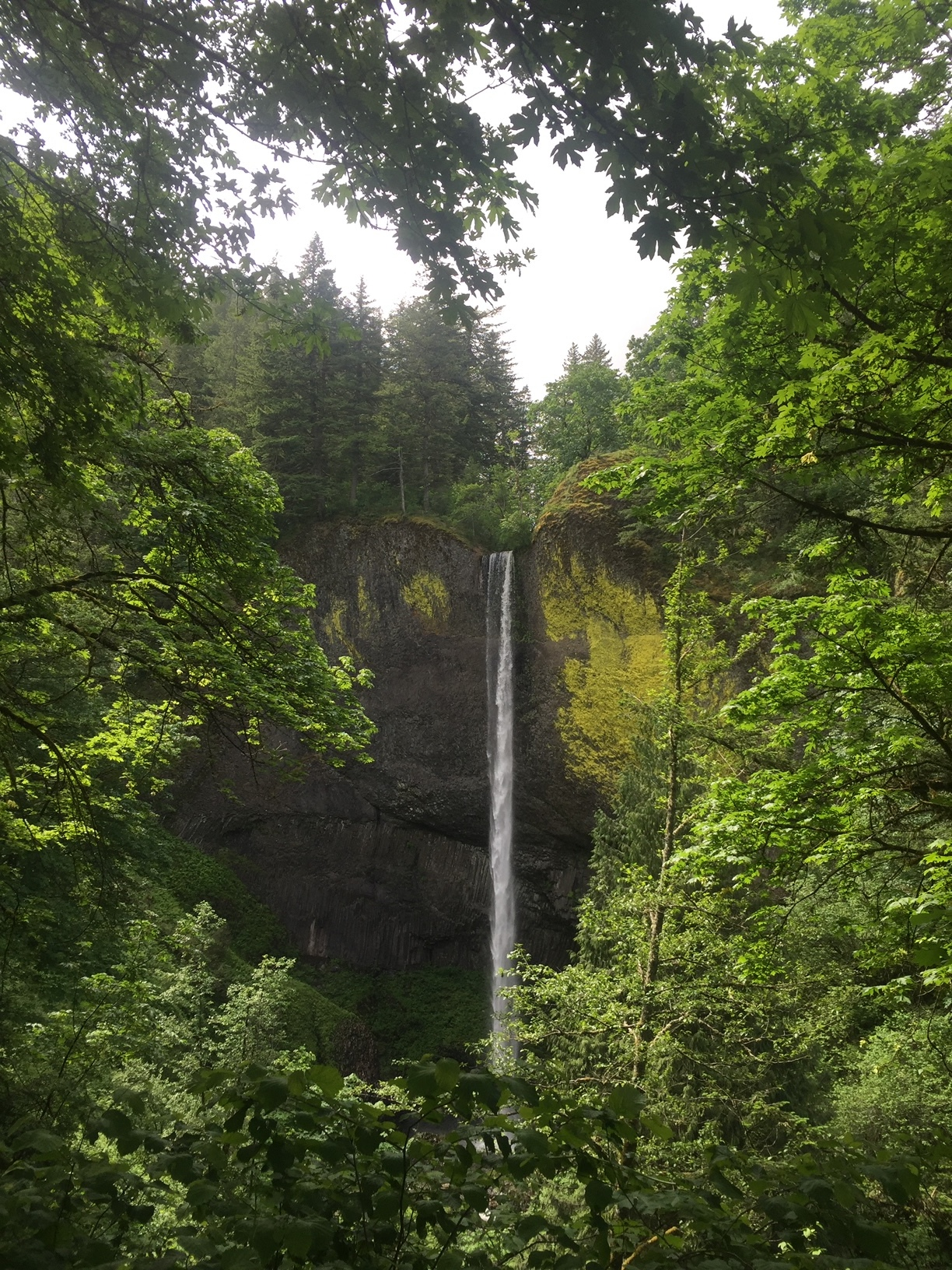 Lower Latourell Falls. Photo by Sarah Cadwell.