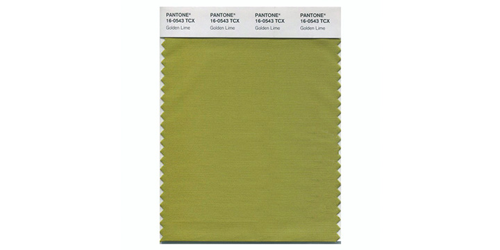 Golden Lime Pantone.jpg