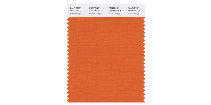 Burnt Orange Pantone.jpg