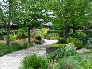 Center for Urban Horticulture