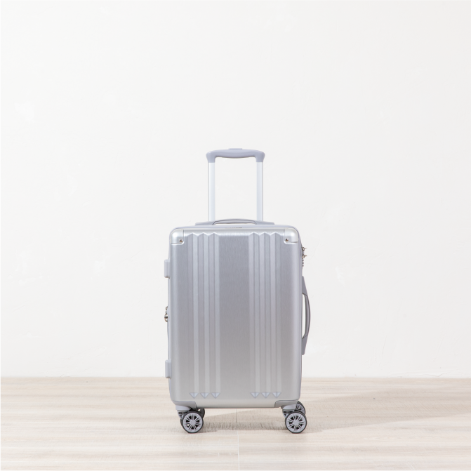 Ambeur Carry-on - Silver