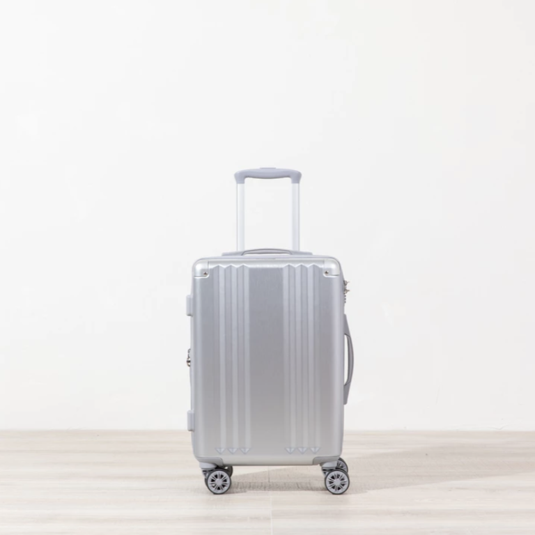 Ambeur - Carry-on - Silver -