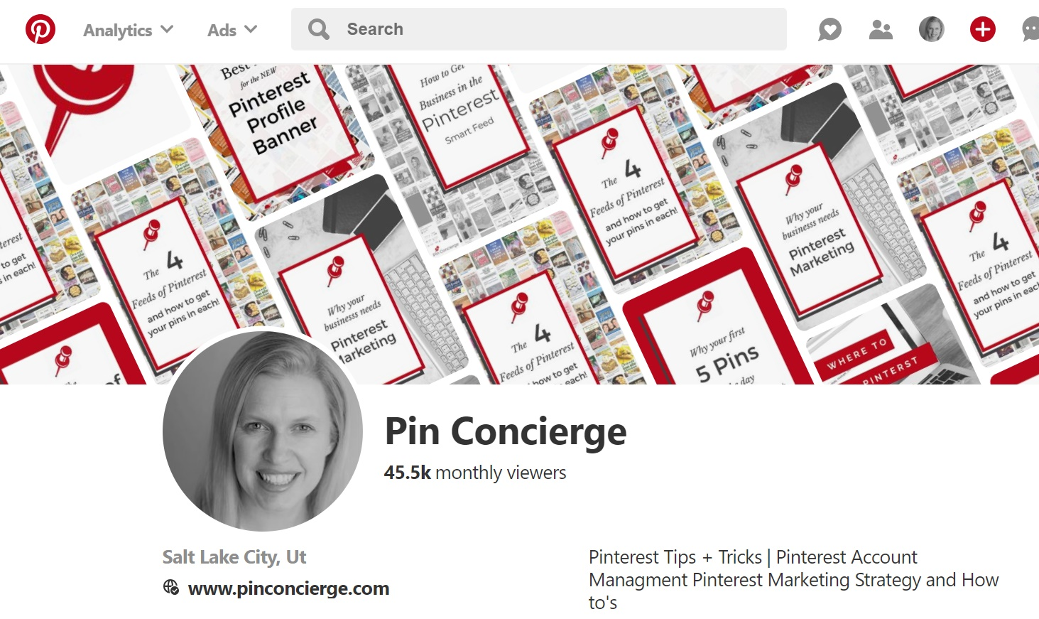 It's a Pinterest business account if the profile has the pin banner above your profile image.