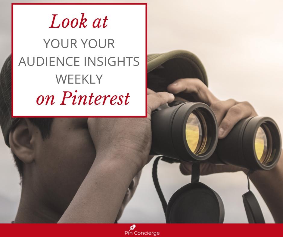 E3 Pinterest Audience Insights FB.jpg