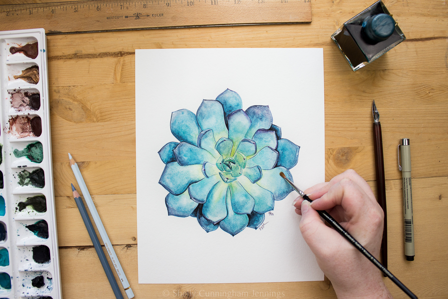 """Succulent 1""  Watercolor on watercolor paper. Prints available."