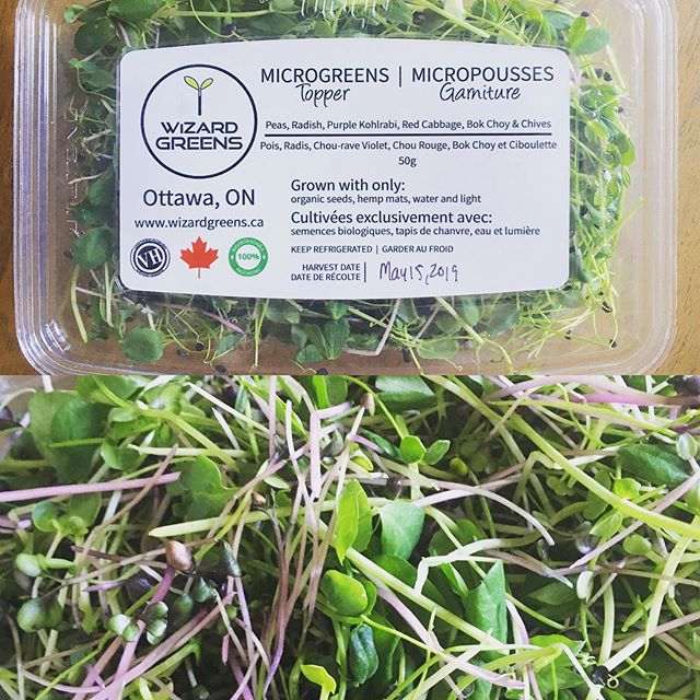 New Product! 👆👆👆 Microgreen Topper! A premixed microgreen package of our top, tasty sellers. Use them to top your salads, sandwiches or anywhere your heart (and cravings) desire! 🌱 🌱 🌱 #wizardgreens #somanymicrogreens #microgreensottawa #microgreens #mumms #terrafibre #organicallygrown #organic #nochemicals #nopesticides #arugula #speckledpeas #kale #radish #broccoli #purplekohlrabi #ottawafood #ottawa #ottawagrowers #supportlocalottawa #ottawafoodies #ottawavegans