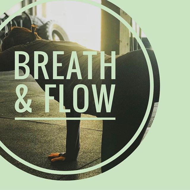 All mamas welcome! Join us for today for Postpartum Breath and Flow at @tulamovementarts at 10:45. Practicing the connection between our breath ... and our core ... and our nervous system. Drop in ✨ . . . #inbend #postpartum #fitness #mindset #bendoregon #centraloregon #inbend #yoga #breathandflow #birthfit #itsallbreath #breathe #birthfitbend #bringbaby #flow #meditation