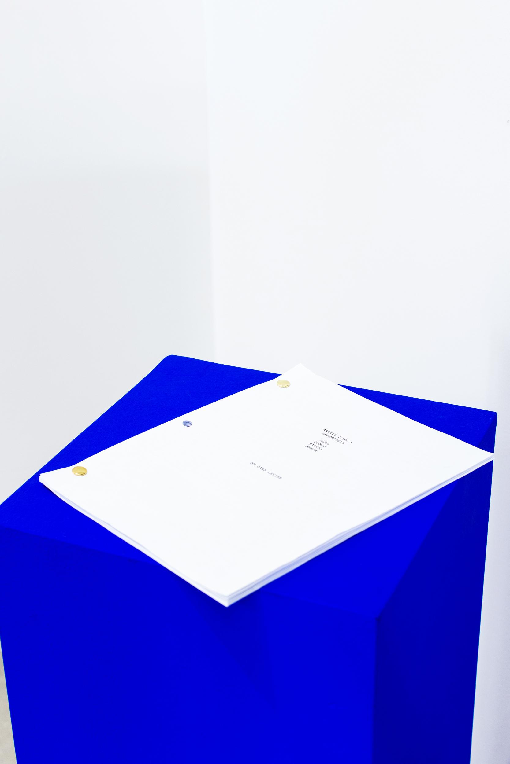 Cara Levine, Becoming Lost, Script, 2018