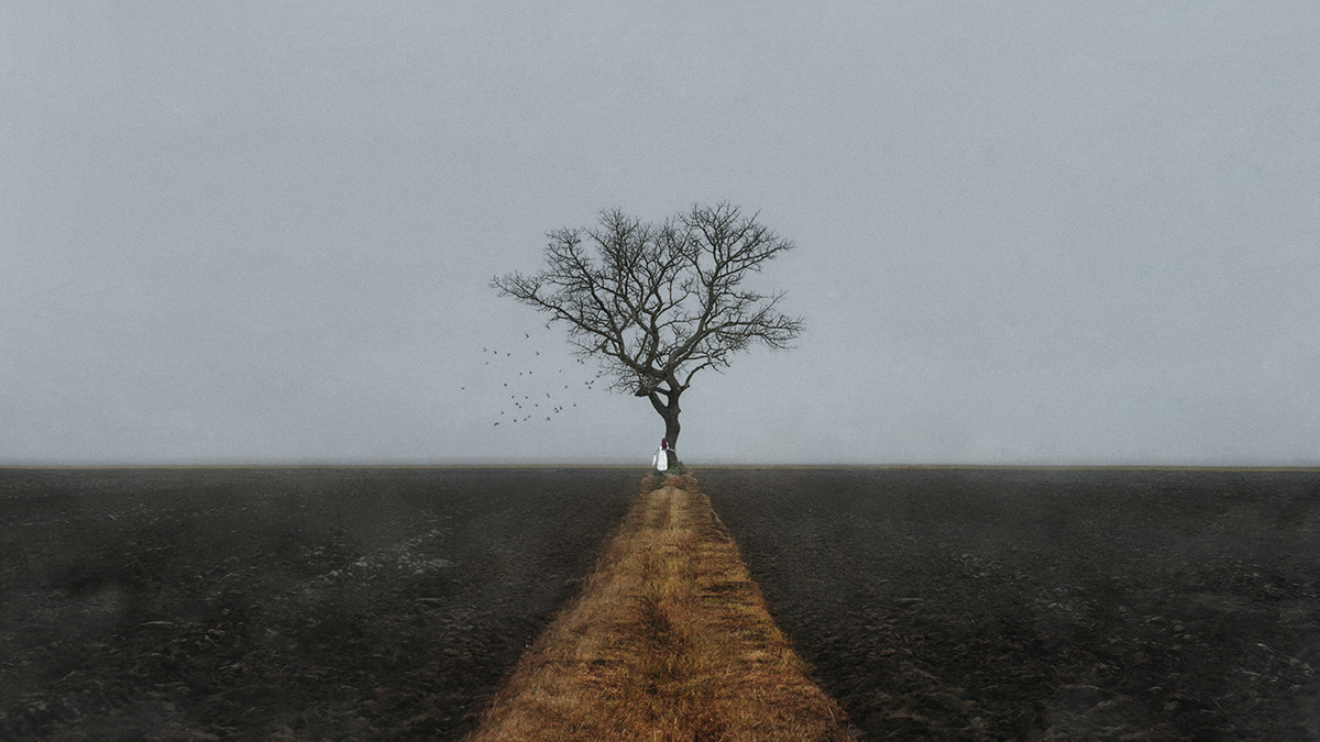 "©Serget Fett ""Мёртвое дерево"""