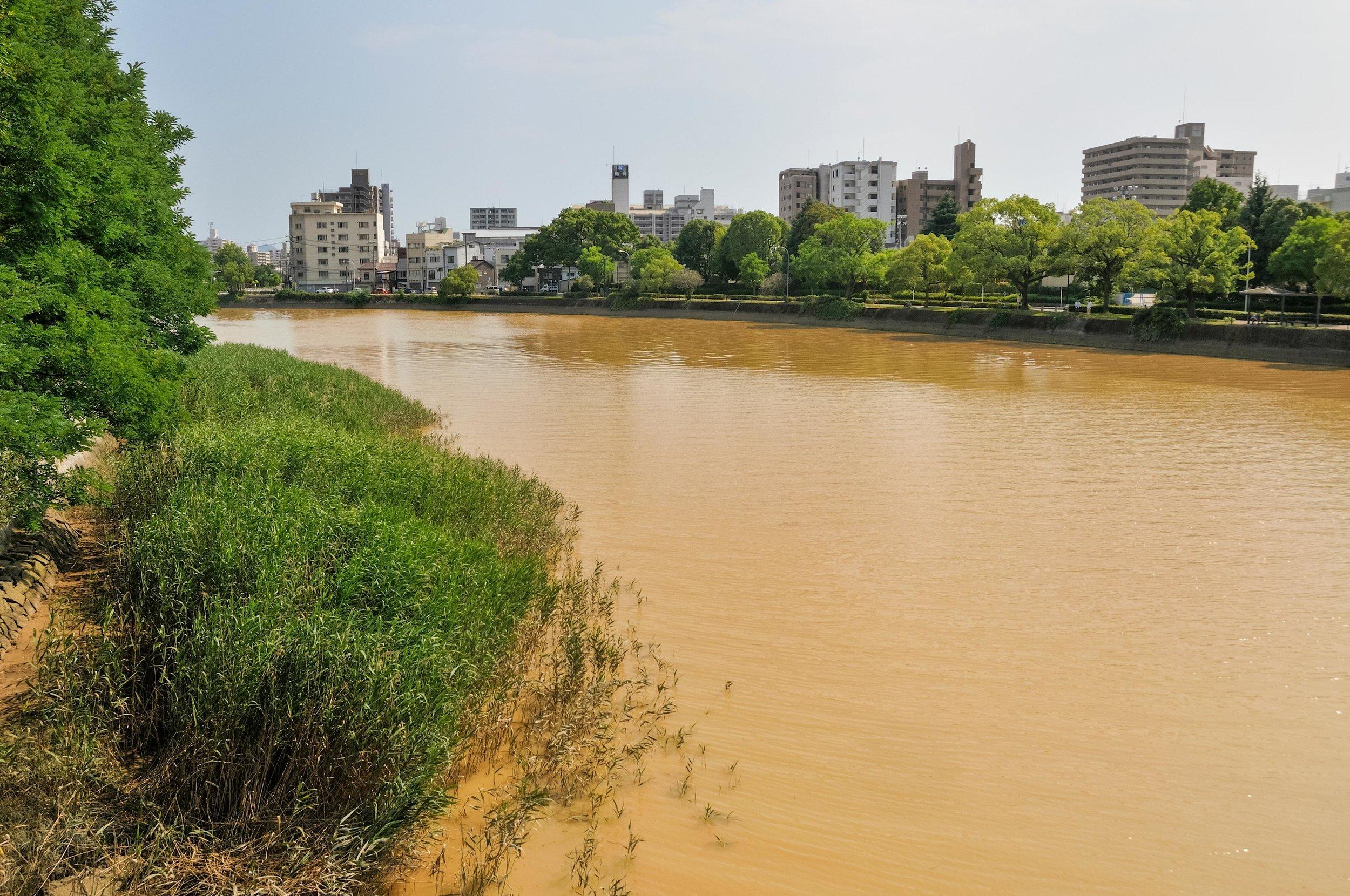 ©藤岡亞彌 (Aya Fujioka)《川はゆく》