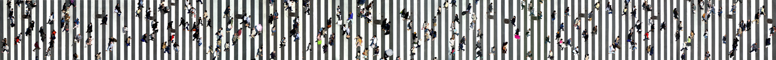 © Wing Chan, The Road is Long (Tokyo)